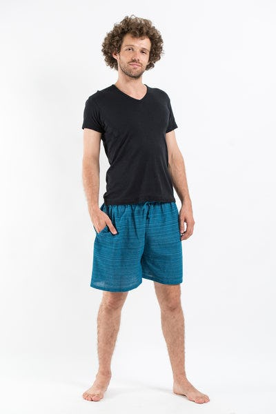 Drawstring Pinstripe  Shorts  in Blue