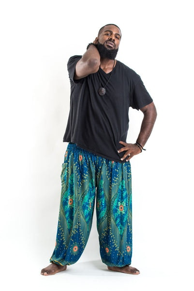 Plus Size Peacock Eye Men's Harem Pants in Turquoise